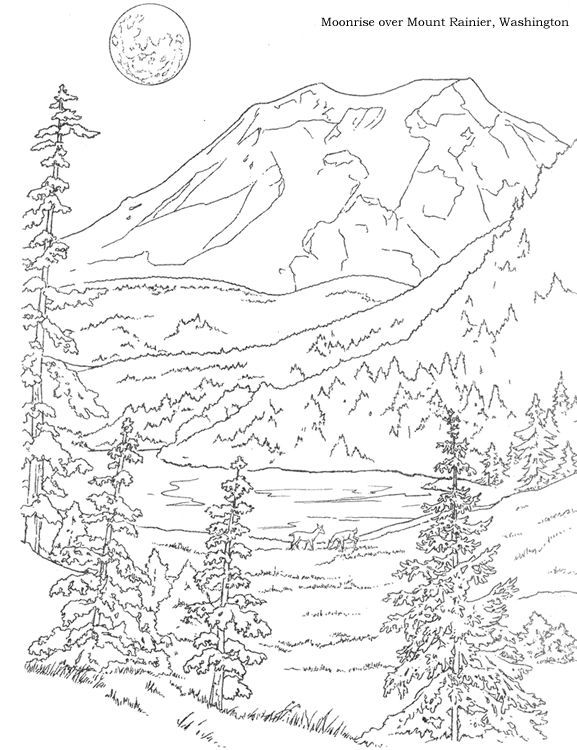 Architecture Adult Coloring Pages: Woods Landscape Coloring Pages - Google Search