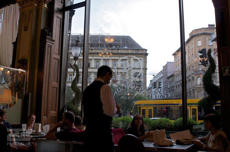 New York Cafe - Budapest photo | 23 Photos Of Budapest