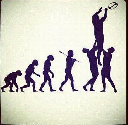 Evoluzione…