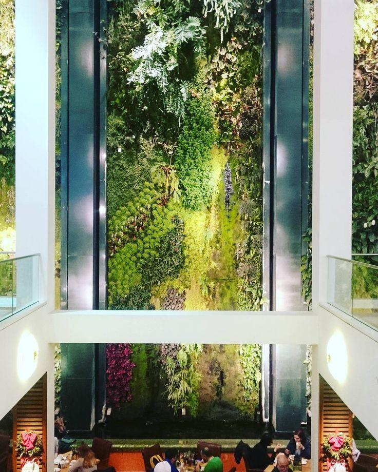 16 besten vertikale g rten bilder auf pinterest balkon. Black Bedroom Furniture Sets. Home Design Ideas