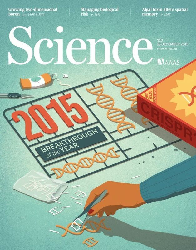 Davide Bonazzi - Science magazine cover. AD Beth Rakouskas, Chrystal Smith. Conceptual, editorial, medical illustration