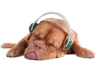 Sover du dårlig? http://jorunnkrokeide.no/sover-du-darlig-her-er-3-tips/