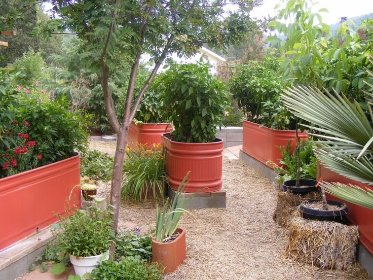 Design Is This The Most Attractive Veggie Garden Ever Steven And Bea Were  Kind With Decoration Flower Pot Brown Color Neat And Wonderful Of Modern  Neat Nice ...