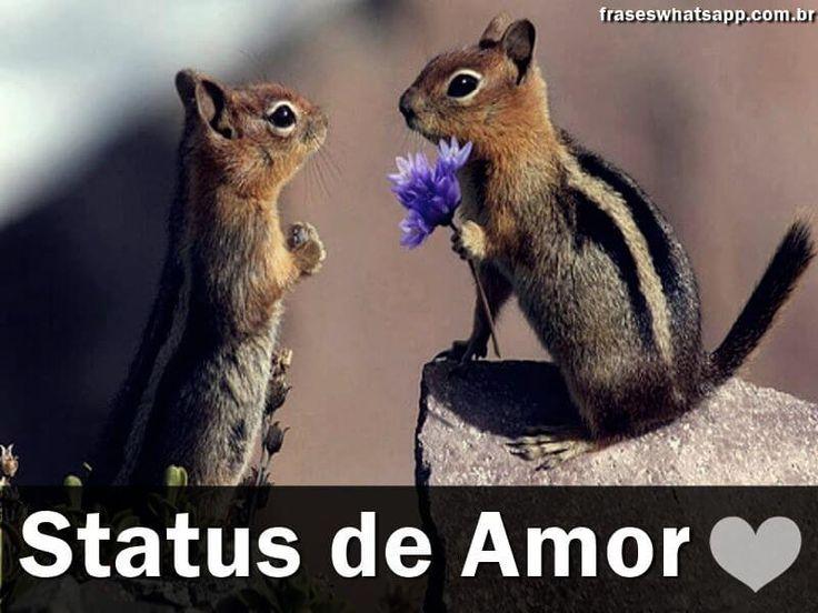100 Frases de Amor para Status!