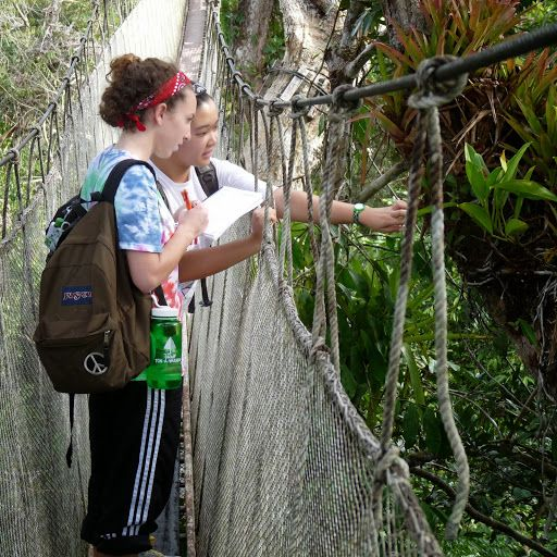 Amazon Apprentices: Mentoring Inquiry in the Rainforest Canopy
