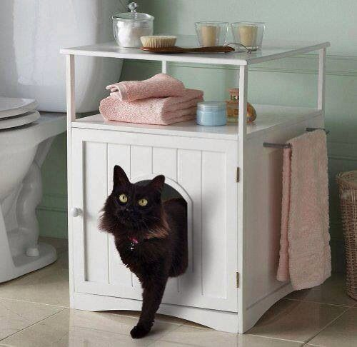 Awesome Cat Litter Box