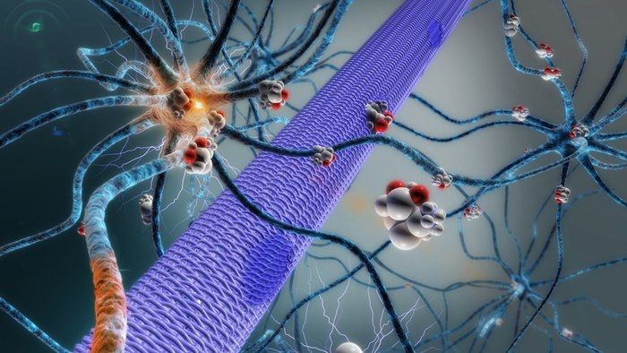 A promising new treatment for epilepsy directly targets the nerve cells that cause seizures. Its creators hope to combine it with an implantable microchip that they previously developed to create an autonomous treatment that delivers epilepsy drugs directly to the brain right before a seizure.
