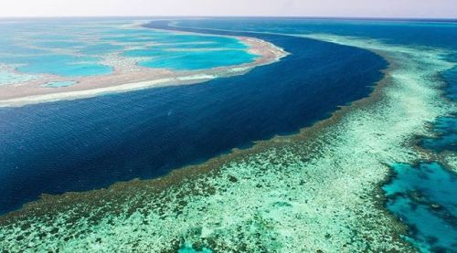 how to see the great barrier reef without diving