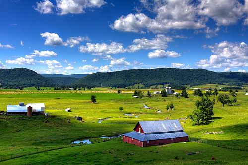 Pasture. Burkes Garden, Virginia