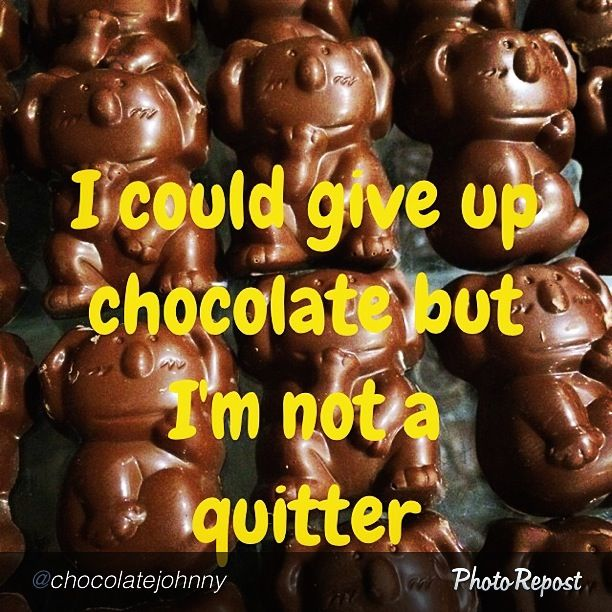 I could give up chocolate but I'm not a quitter.... How can you resist our #chocolate #caramel #koalas