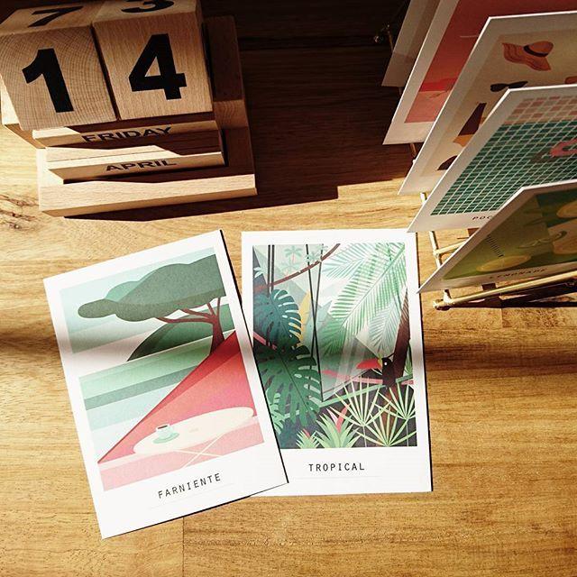 [POLACARDS] Invitez le soleil chez vous en vous offrant notre collection POLACARDS 👉 visitez notre e-shop: lien en bio 😎🌴☀️ #vacances #sun #morning #polacards #pramax #illustration  #homedecor #farniente #tropical  #monstera #cartespostales #madeinfrance #wacom #papierrecycle #deco #Lyon #poolparty #toucan #holidays