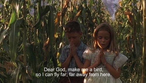 Dear God,   make me a bird, so I can fly far far away from here. <3  ~Forrest Gump