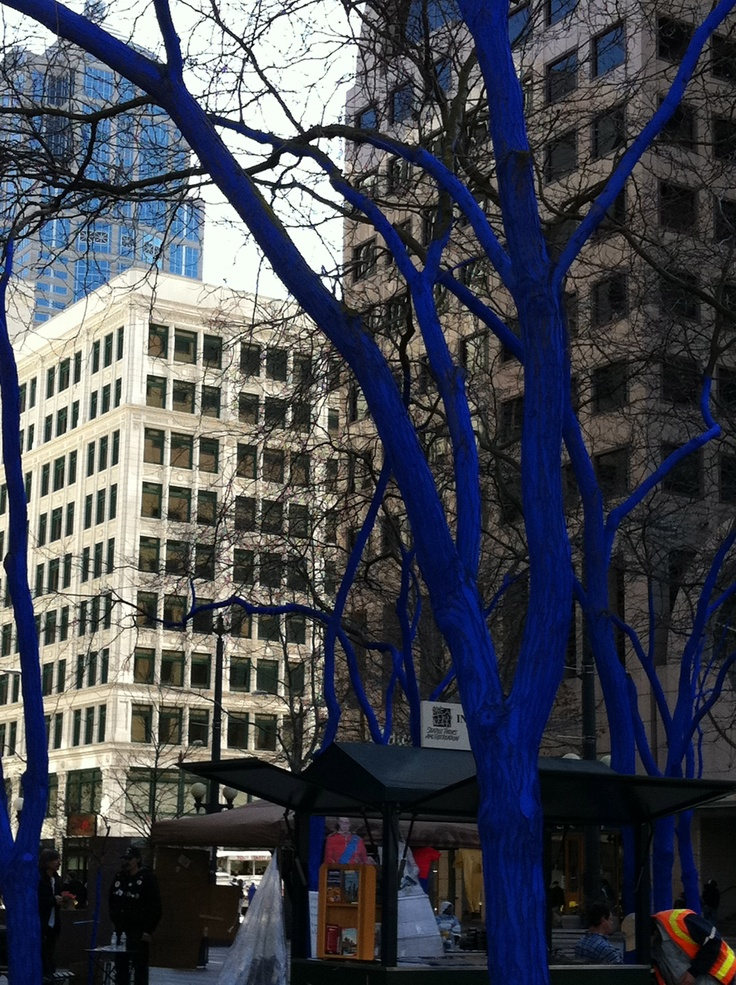 These trees are part of a worldwide Art Installation. They are in a public square in downtown Seattle, and you have to take my word for it...the shade of blue is really quite extraordinary. I have seen these trees a million times over the years, and to see them this way really altered my view of the entire surrounding area. Questions regarding the mess, the potential damage to the trees aside. I think the execution behind this installation really works.