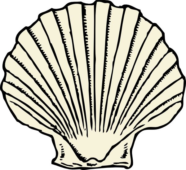 Clip Art Sea Shell Clipart 1000 images about seashell on pinterest sea shells clip art drawings clam shell tattoo 2015 pilgrimage espania google clipart clipart