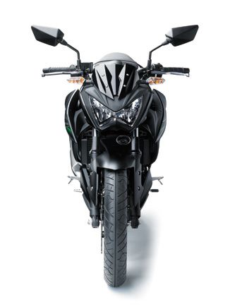 Kawasaki Z250 Street Fighter Price in India and Specifications