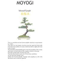 MOYOGI - 9