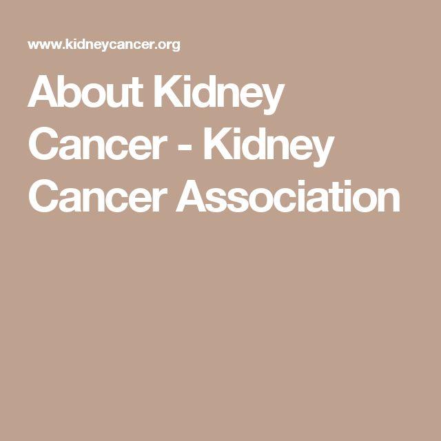About Kidney Cancer - Kidney Cancer Association