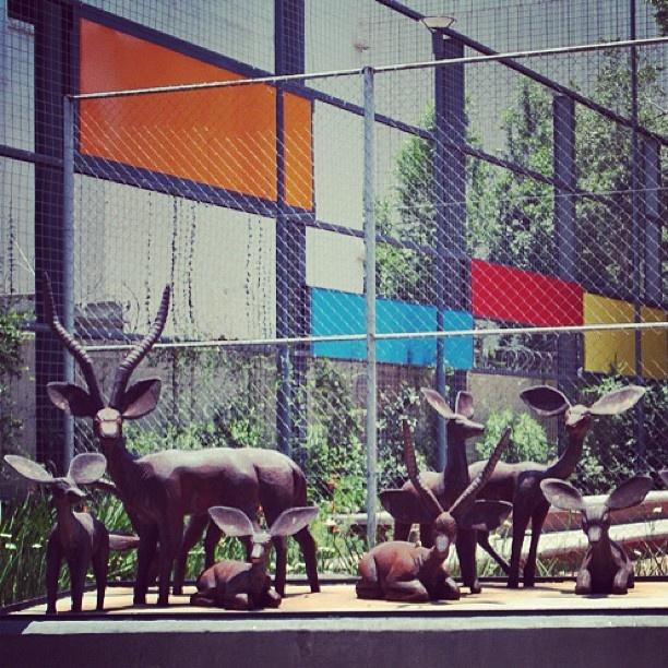 Exploring Ernest Oppenheimer Park. #sculpture #colour #publicart #park #johannesburg #instagram #urbangenesis