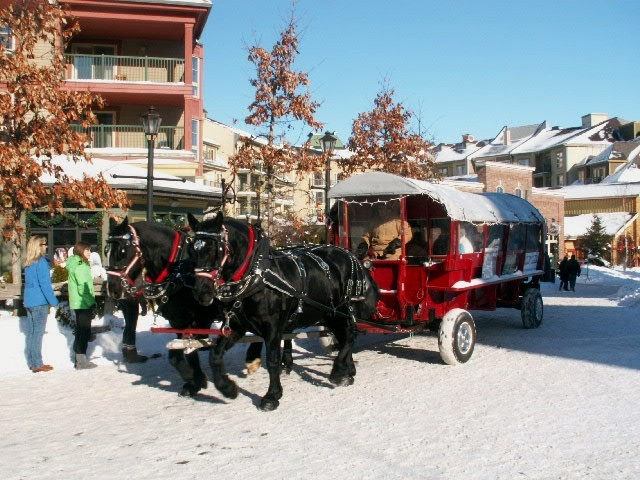 Lots of seasonal attractions to enjoy
