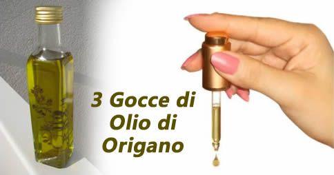 L'origano è una pianta aromatica, molto usata in cucina, che possiede inoltre tantissimi poteri curativi. [Leggi Tutto...]
