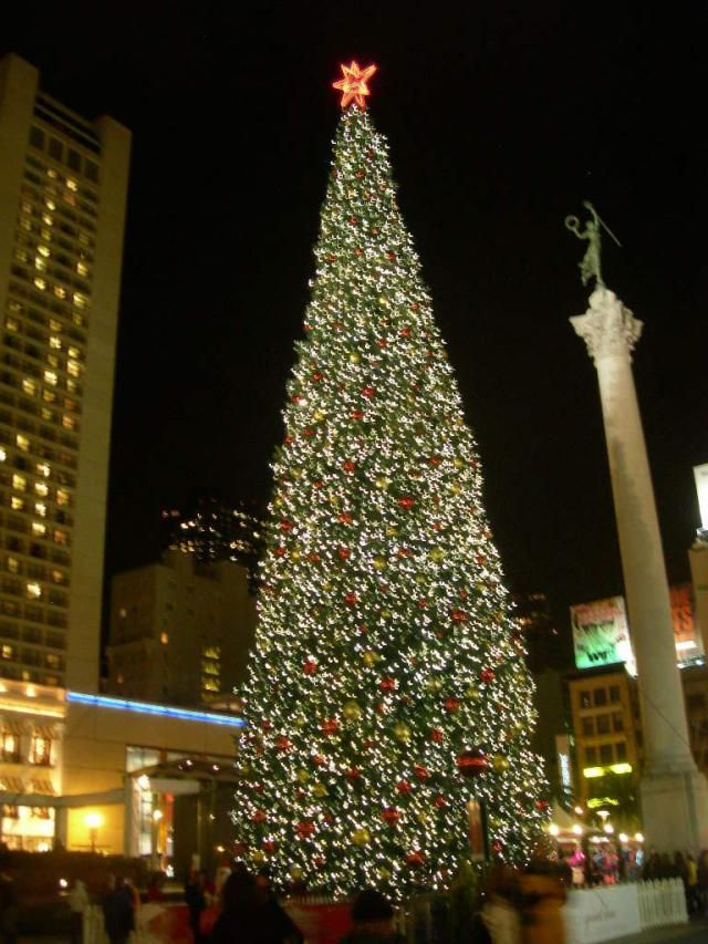 San Francisco's Best Christmas Trees & Holiday Lights: Macy's Christmas Tree in Union Square, San Francisco