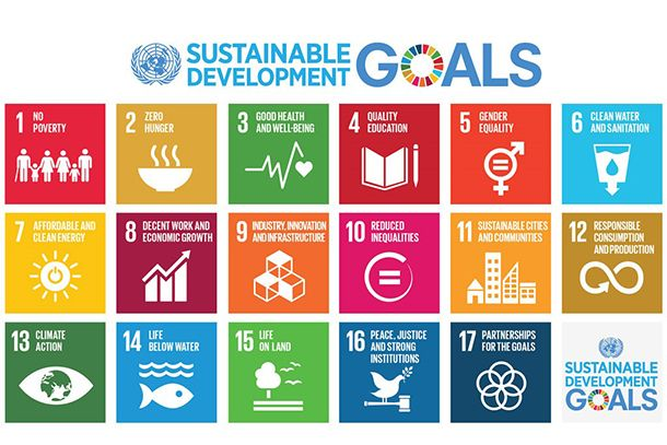 Common Questions on the Sustainable Development Goals: What is the High-level Political Forum on Sustainable Development?  SDG Poster