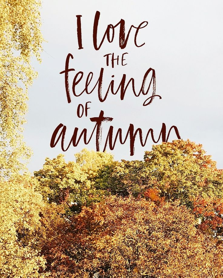 I Love It When Everything Looks So Colorful. Autumn LoveHello ...