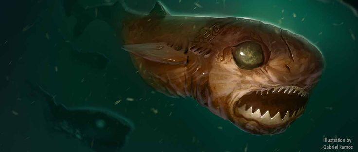 Resultado de imagen de cookie cutter shark