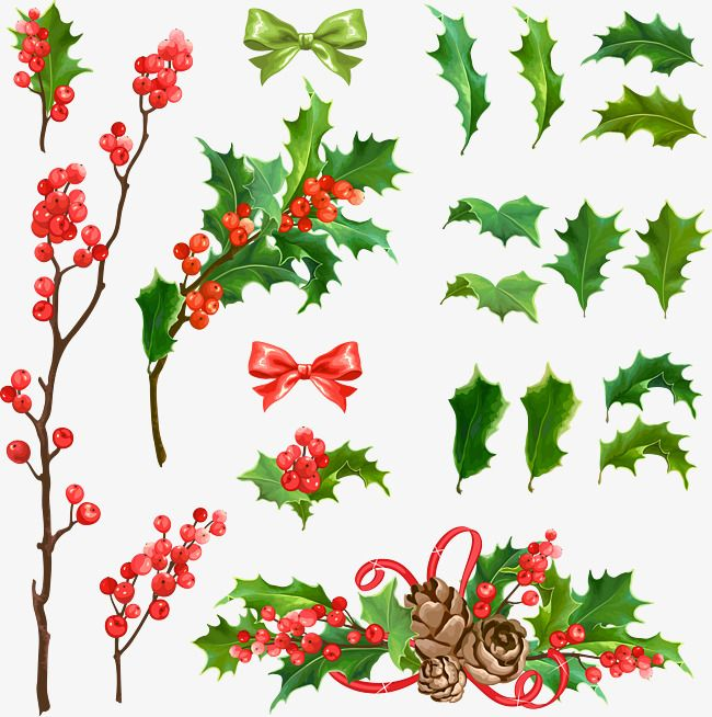 Various Styles Vector Christmas Tree Decoration Mistletoe Clipart Vector Christmas Png Transparent Clipart Image And Psd File For Free Download 크리스마스 트리 새해 장식 크리스마스 카드