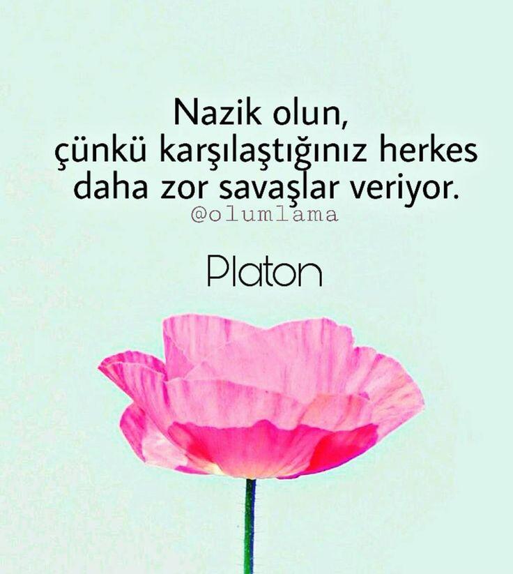 Nazik olun, çünkü karşılaştığınız herkes daha zor savaşlar veriyor.   - Platon  (Kaynak: Instagram - olumlama)  #sözler #anlamlısözler #güzelsözler #manalısözler #özlüsözler #alıntı #alıntılar #alıntıdır #alıntısözler #şiir #edebiyat