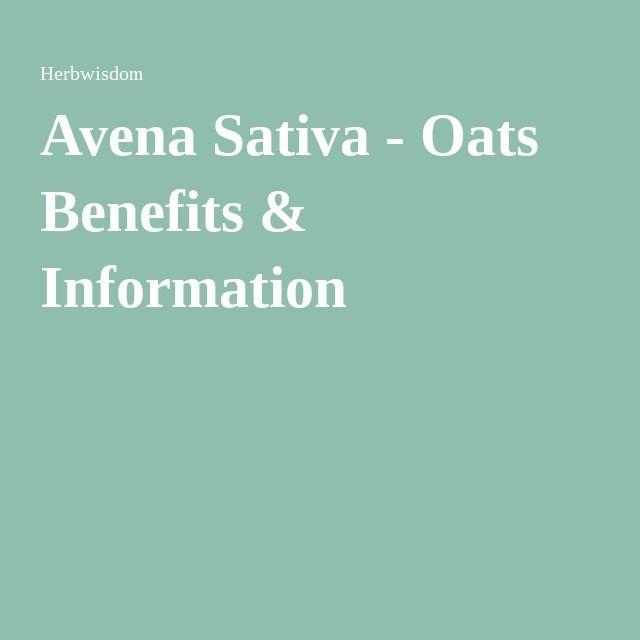Avena Sativa - Oats Benefits & Information