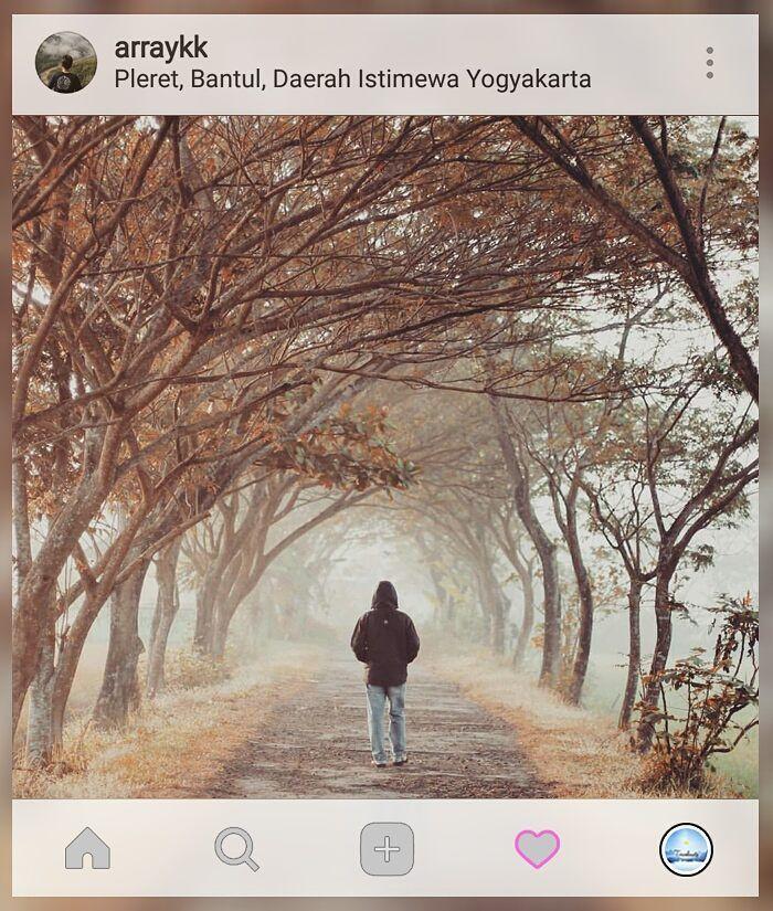this place is cooling as the beginning of fasting this morning   Loc: #Pleret #Bantul #Yogyakarta    Kebayang ga sih kalo jalan-jalan kamu dibikin kegiatan #TravelGame yang menarik dan unforgetable? Ga cuma dateng foto lalu pulang gitu aja. Yuk cek  www.travelmate.today/travelgame untuk detailnya   Tag #travelmate kamu  #outing #gathering #traveling Travelmate Today IndonesiaTravelmate Today Indonesia