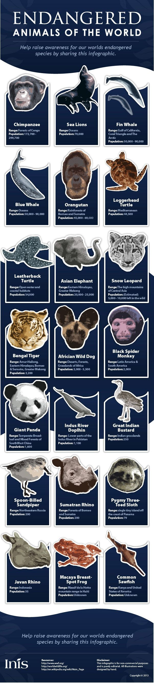 Best 25 endangered animals lessons ideas on pinterest Design a sustainable house lesson plan