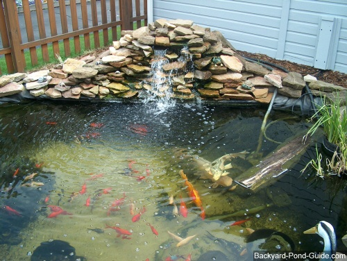 42 best images about fish pond ideas on pinterest pond for Koi pool dekor