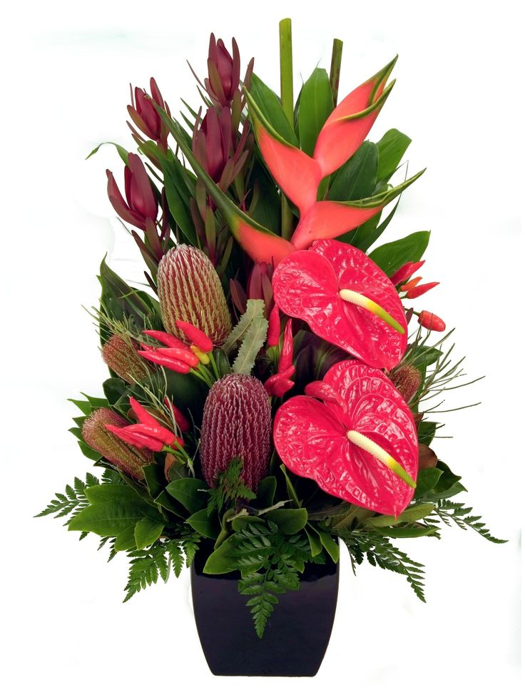 Tropical and Native arrangement - Donvale Flower Gallery