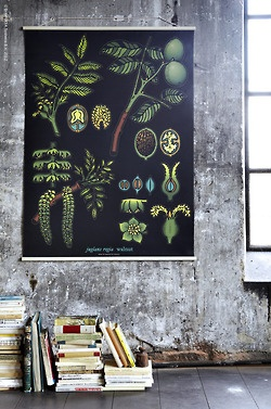 Sibbared school poster from Ikea.