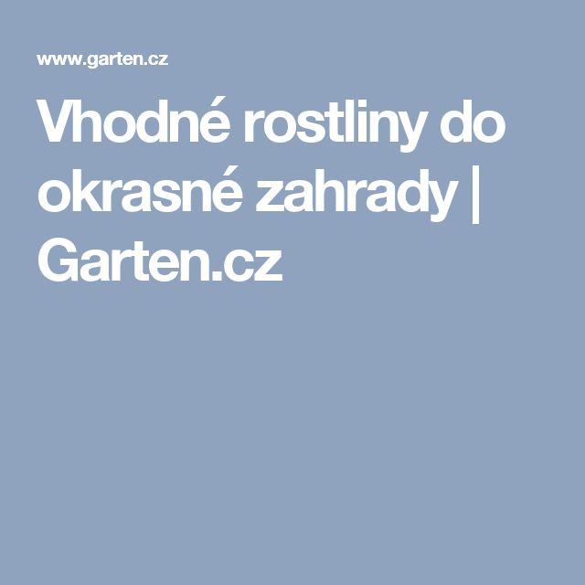 Vhodné rostliny do okrasné zahrady | Garten.cz
