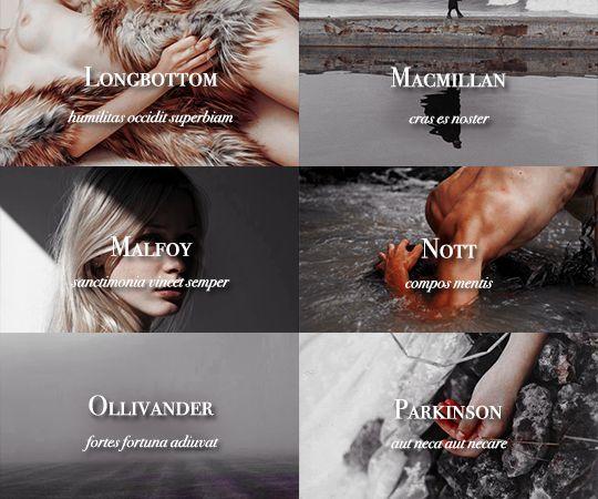 Sacred Twenty-Eight pureblood families: Longbottom, Macmillan, Malfoy, Nott, Ollivander, Parkinson