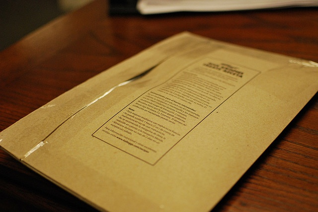 Cereal Box Shipping Envelope