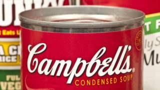 Image copyright                  thinkstock                  Image caption                     Campbell utiliza bisfenol A para recubrir el interior de sus latas de sopa desde hace 40 años.   Cuando el ilustrador comercial Andy Warhol hizo mundialmente famosa la lata de sopa Campbell´s en 1962, probablemente no se imaginaba que medio siglo después esa misma lata volvería a generar controversia, esta vez por motivos que nada tienen que ver con el arte po