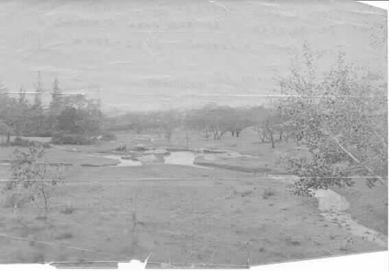 MP 1472. View of lake at Hedgeley Dene Farm Wattletree Road, East Malvern, c.1892.