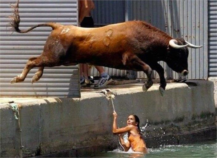 Taking a Dip - Top 20 Hilarious #PerfectlyTimedPhotos #Weird #FunnyPictures #wtf