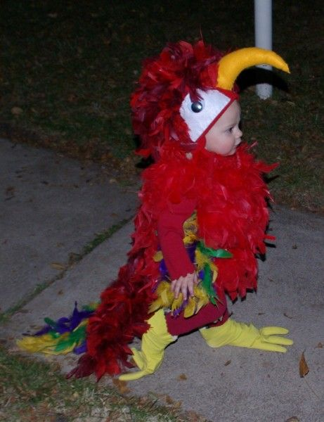 Google Image Result for http://costumepop.com/wp-content/uploads/2009/11/Zachary-parrot-cropped-461x600.jpg