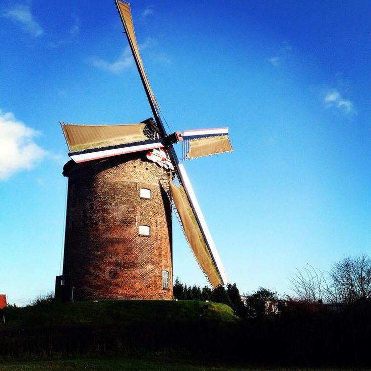 Omdat het zo'n mooi plaatje is #molen #Zevenaar. Zondag 5 januari 2014. via twitter @birgit_67.