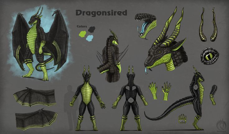 character sheet for Dragonsired by MargotShareaza.deviantart.com on @DeviantArt