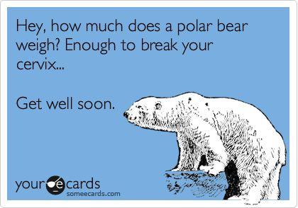 How much does a polar bear way