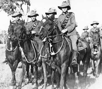 australian horses at war - Google Search