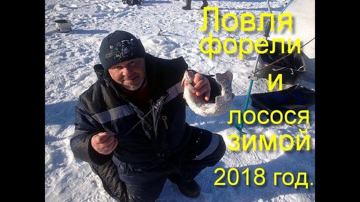 fishing, Рыбалка зимой, форель, лосось, секреты ловли.