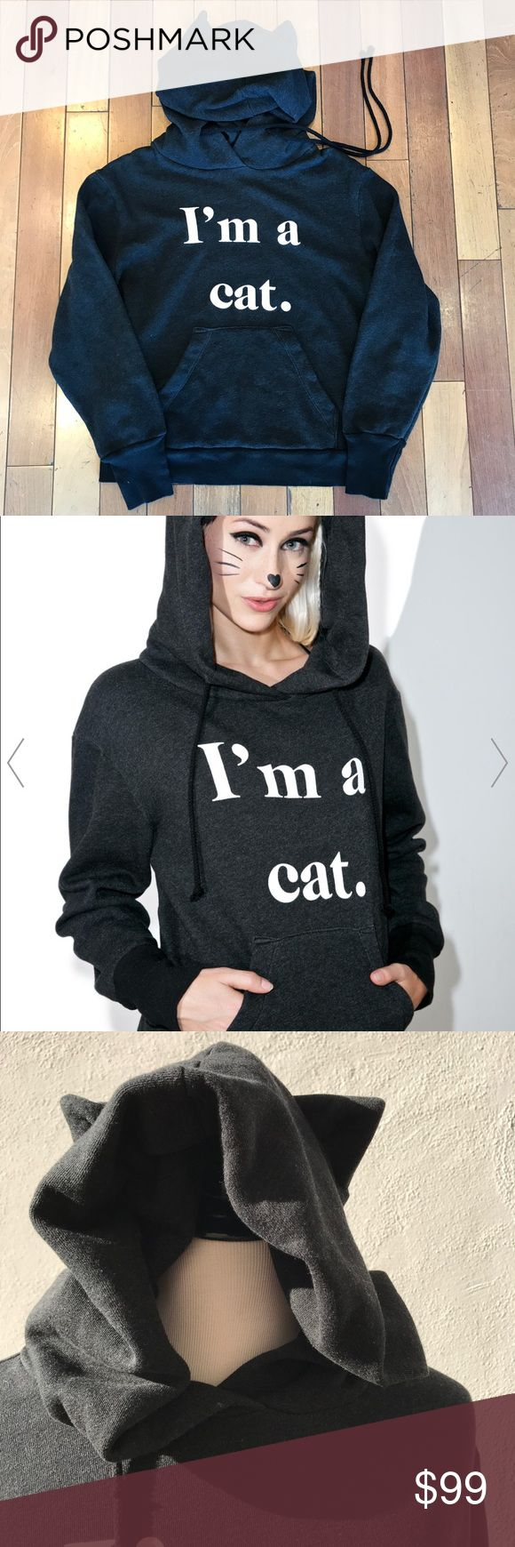"""Final♦️WILDFOX I'm a Cat hoodie with ears ♦️Firm. Amazing and I wanted to keep it but am over budget. The price is firm and it's in excellent condition tagged as a sample. LAST CALL at this temporary markdown! Ship it today before my vacation starts late Tuesday.  Check back daily for DAILY DEALS.  *** This Rare and rad WILDFOX hoodie is incredibly soft and dang cute.  I'M A CAT - This hoodie has ears! Something about this...  Laid flat, measures 21"""" armpit to armpit x 23.5""""  See my other…"""