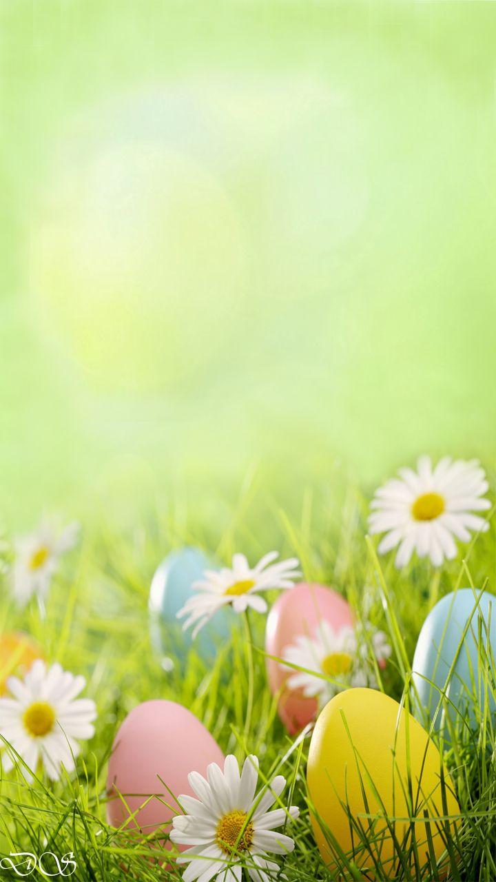 17 best ideas about spring desktop wallpaper on pinterest - Free computer backgrounds for spring ...